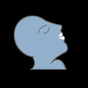 viso di profilo